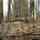 Spuren der Vergangenheit - Kiel und Umgebung